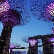 What You Should Ask Travel Agents Before Booking Travel Deals To Singapore